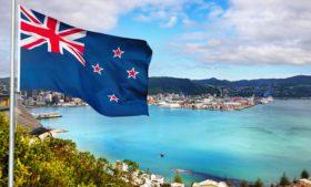 O que mais aprendi na Nova Zelândia?