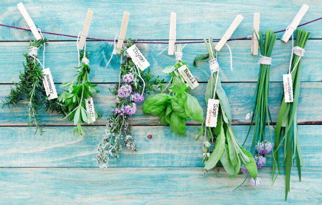 Os tratamentos alternativos são bem caros. Foto: Shutterstock
