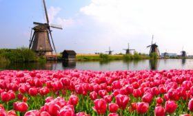 Que tal um mochilão pelos Países Baixos a bordo de um trem?