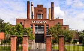 Vaga para testadores de Guinness na Irlanda