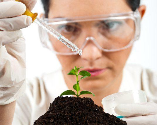 Agronegócio é um dos setores para biotecnologia. Crédito Gabriel Blaj   Dreamstime