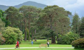 Melhores parques para conhecer durante o intercâmbio na Irlanda