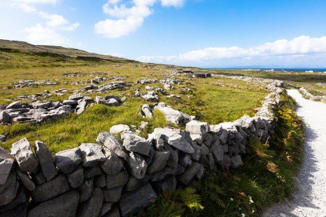 Verão pelo interior da Irlanda. Crédito: Shutterstock