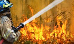 Brasileiros na Austrália narram dia a dia dos incêndios