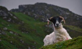 Donegal entra para Nível 3 do lockdown na Irlanda